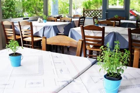 """Φρέσκα ψάρια θαλασσινά στο εστιατόριο """"Θησαυρός των Γεύσεων"""" στο Χαλάνδρι"""